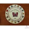 Porcelán tányér ovis jelekkel /16 jel/   Ø26 cm